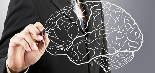 desenho de cérebro humano