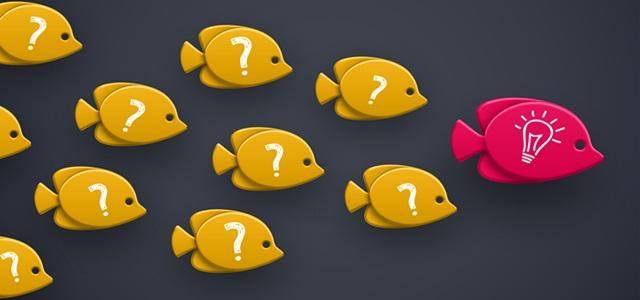 peixes seguindo líder