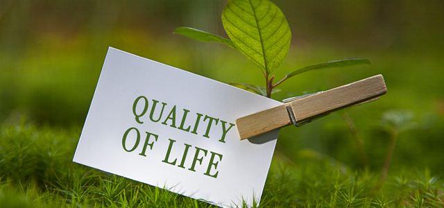 papel com as palavras qualidade de vida em fundo com grama
