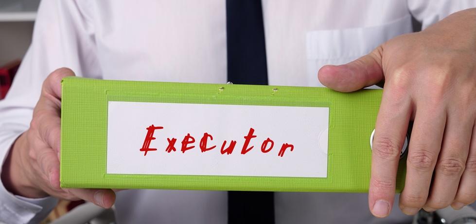 Características do perfil Executor