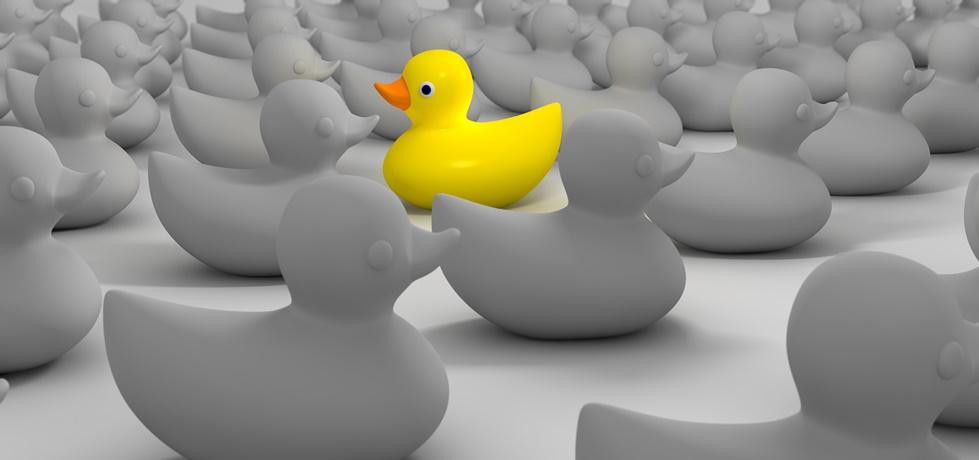 Individualismo nas empresas